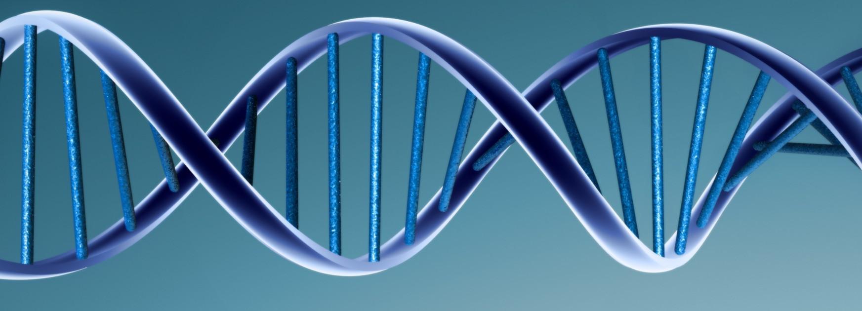 DNA | sciencemomma